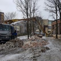 r_slaski_uniwersytet_medyczny_katowice (5)